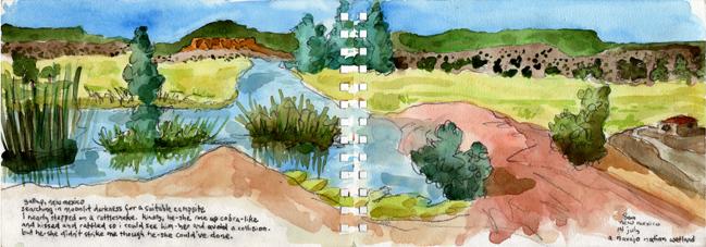 39-navajo-nation-wetland