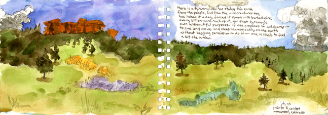 47-prairie-conifers-at-monument