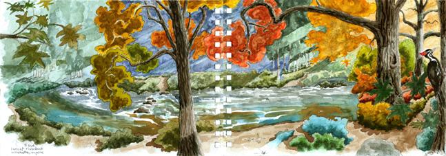 74-sunset-willamette-riverbank-eugene